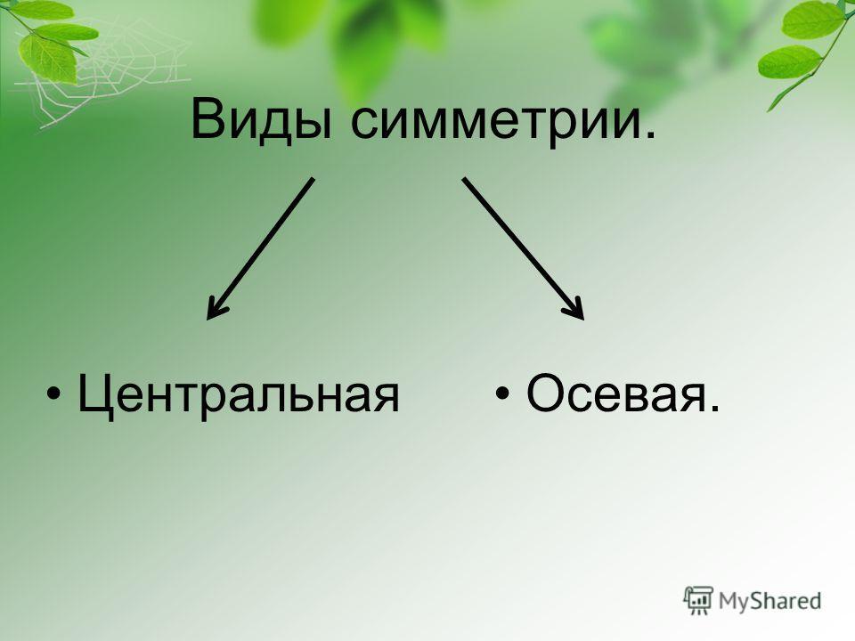 Виды симметрии. ЦентральнаяОсевая.