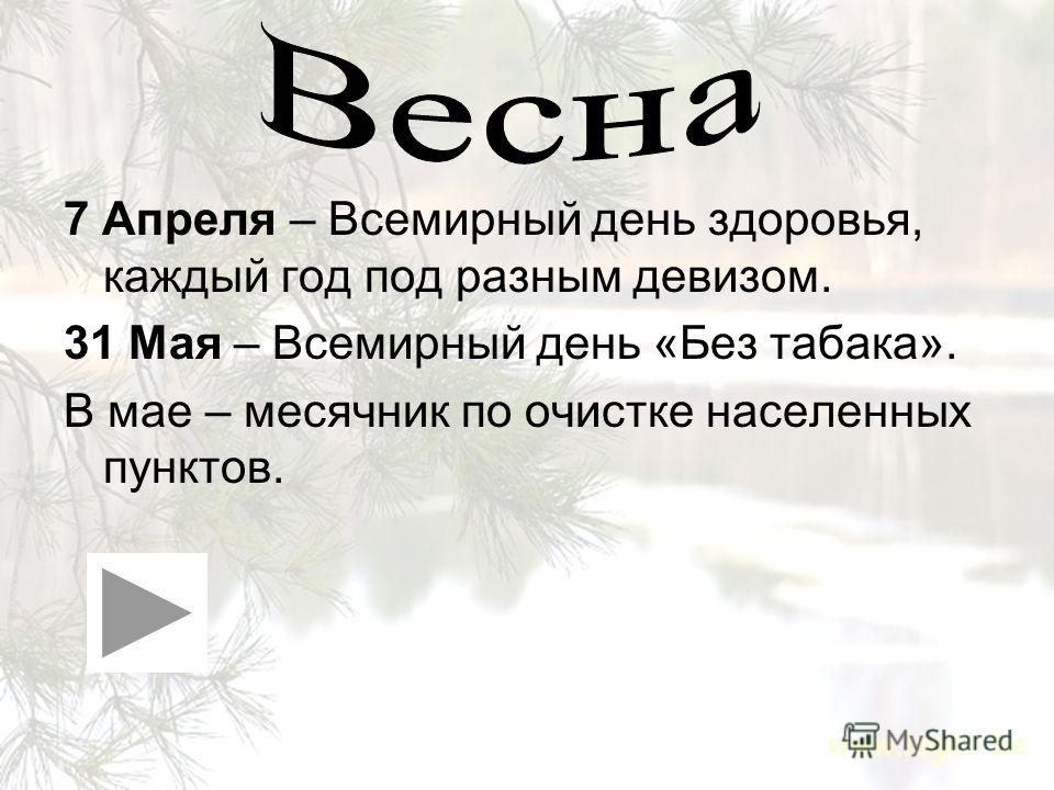 1.Весна 2.Лето 3.Осень 4.Зима 5.Учеба + ЗОЖ 6.В заключении.....