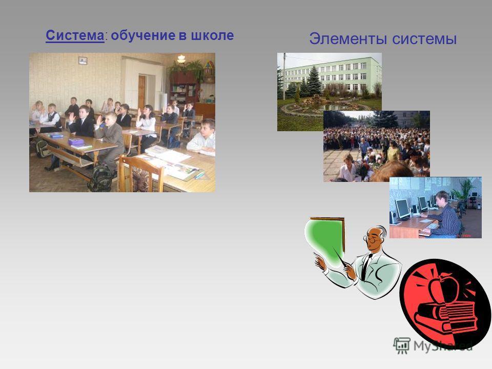 Система: обучение в школе Элементы системы