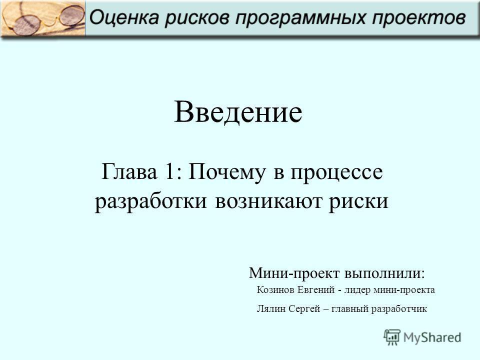 Введение Глава 1: Почему в процессе разработки возникают риски Козинов Евгений - лидер мини-проекта Лялин Сергей – главный разработчик Мини-проект выполнили: