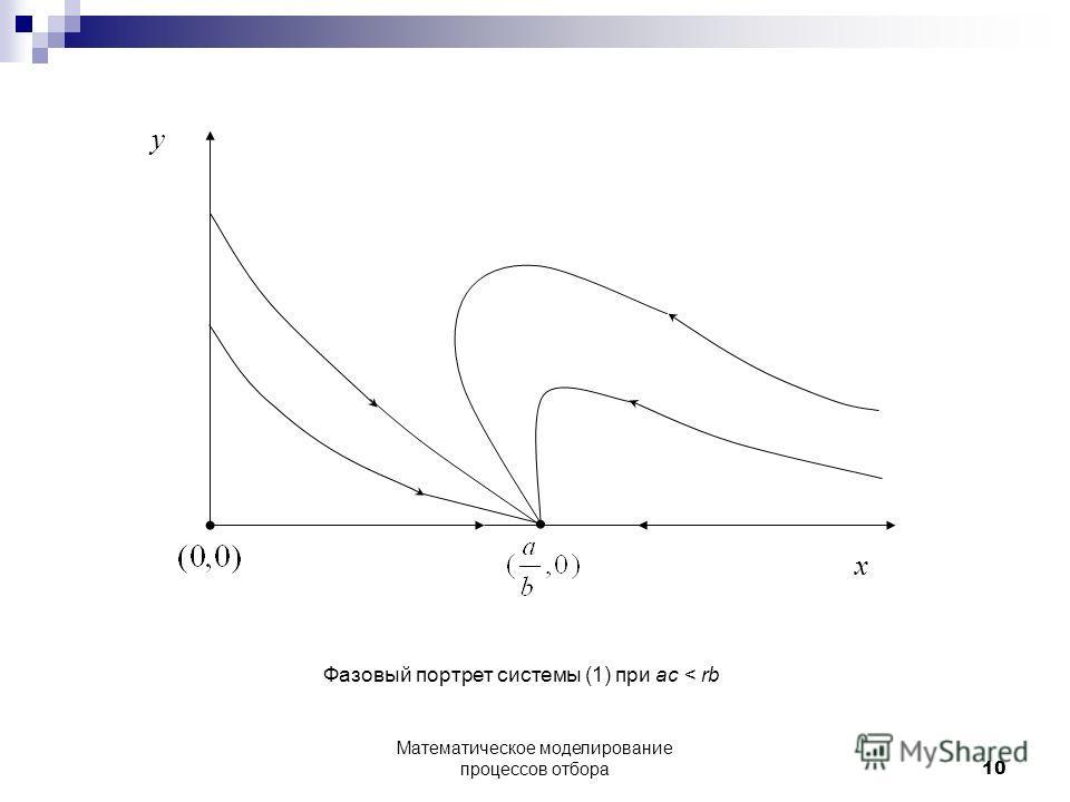 x y Фазовый портрет системы (1) при ac < rb 10 Математическое моделирование процессов отбора