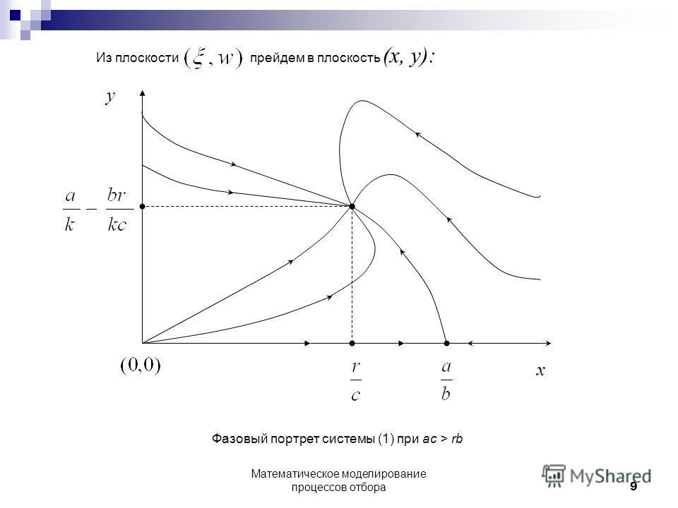 Из плоскости прейдем в плоскость (x, y): x y Фазовый портрет системы (1) при ac > rb 9 Математическое моделирование процессов отбора