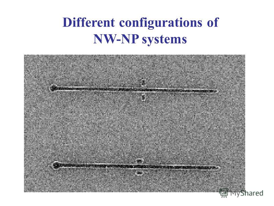 Different configurations of NW-NP systems
