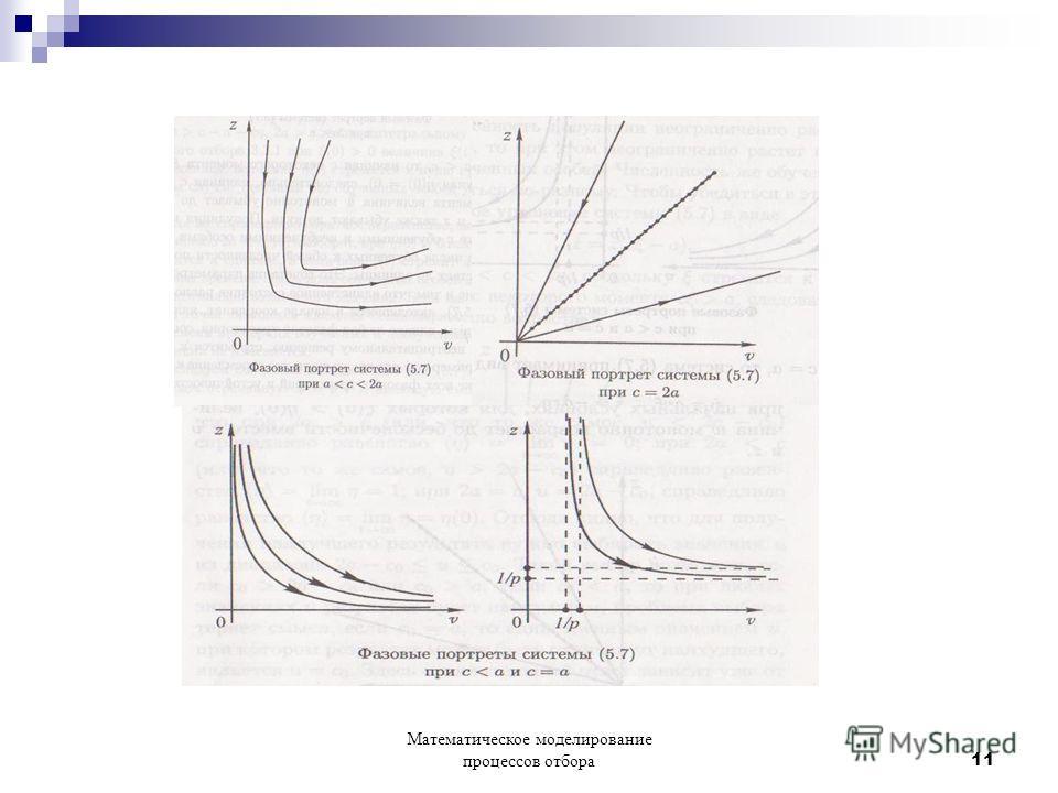 Математическое моделирование процессов отбора 11