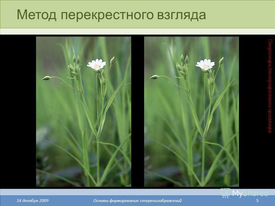 5 Метод перекрестного взгляда 14 декабря 2009Основы формирования стереоизображений Стереопара для перекрестного просмотра