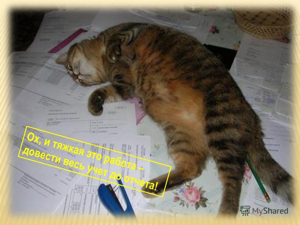 Ох, и тяжкая это работа – довести весь учет до отчета!