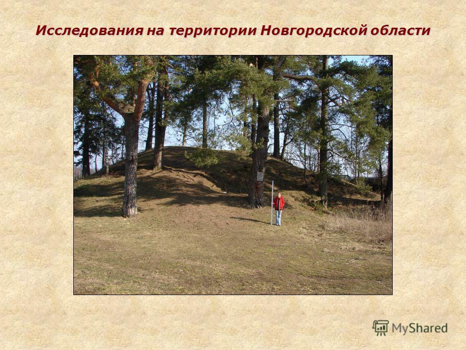 Исследования на территории Новгородской области