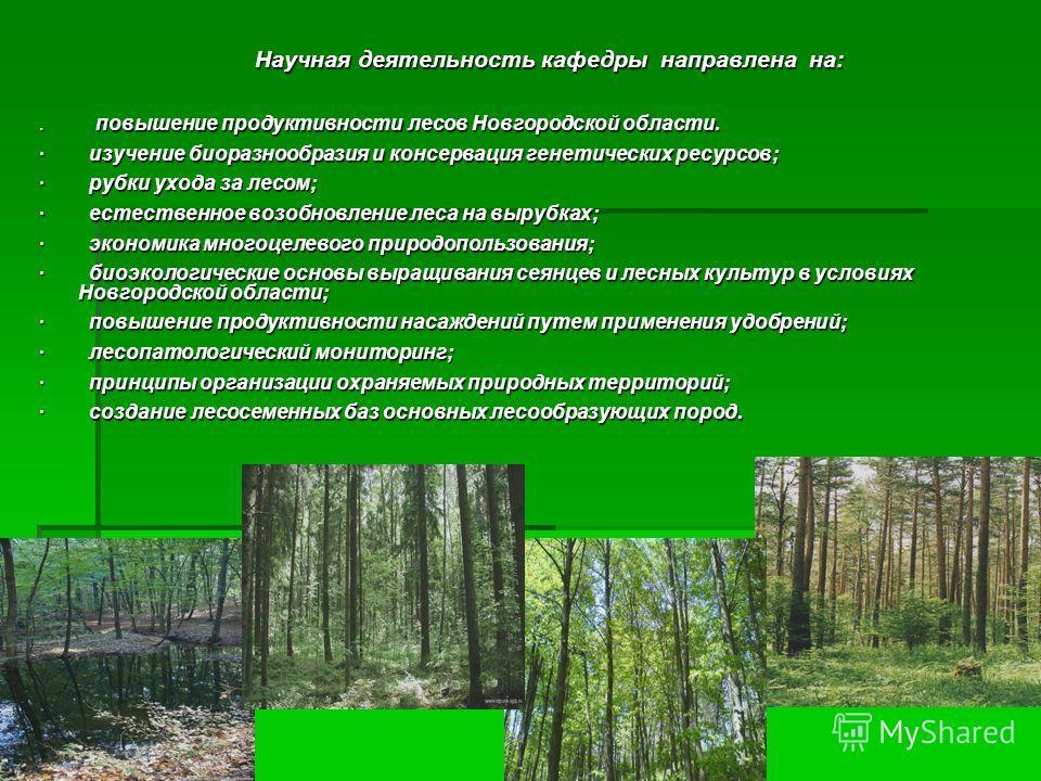Научная деятельность кафедры направлена на:. повышение продуктивности лесов Новгородской области. · изучение биоразнообразия и консервация генетических ресурсов; · рубки ухода за лесом; · естественное возобновление леса на вырубках; · экономика много