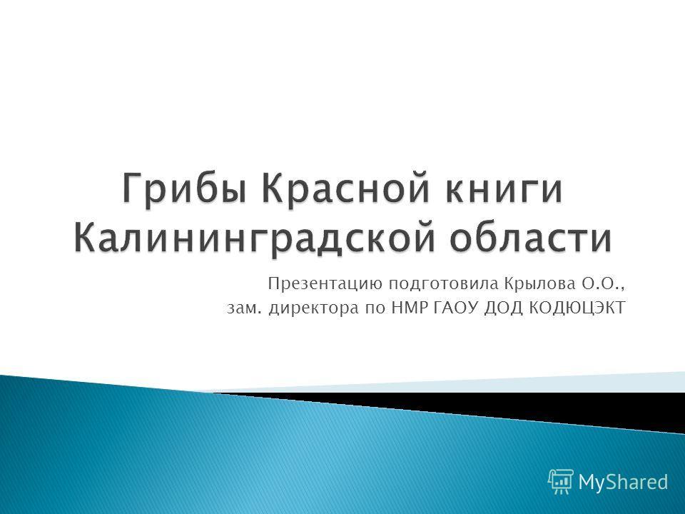 Презентацию подготовила Крылова О.О., зам. директора по НМР ГАОУ ДОД КОДЮЦЭКТ