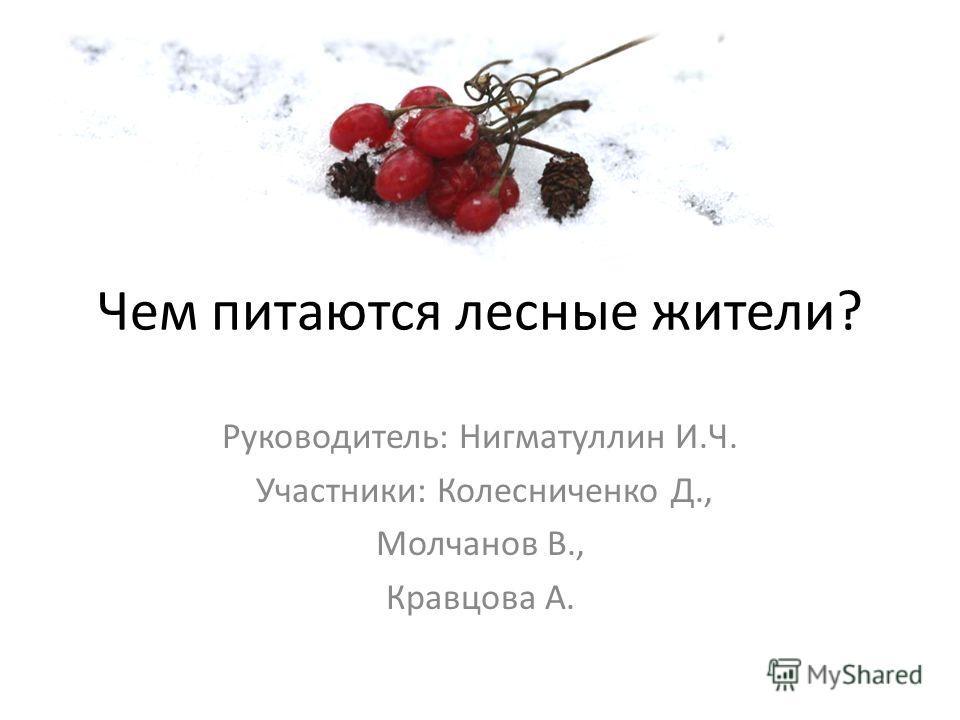 Чем питаются лесные жители? Руководитель: Нигматуллин И.Ч. Участники: Колесниченко Д., Молчанов В., Кравцова А.