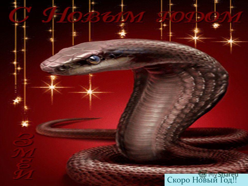 Скоро Новый Год!!
