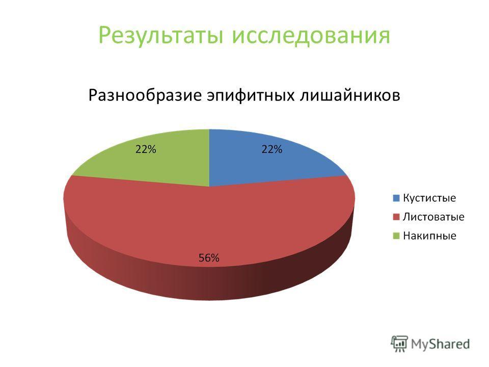 Результаты исследования Разнообразие эпифитных лишайников