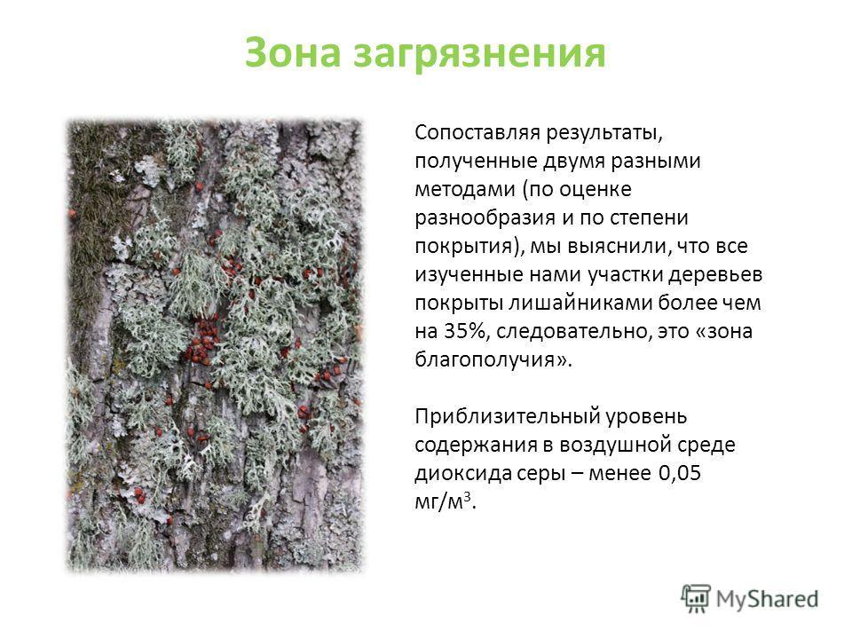 Зона загрязнения Сопоставляя результаты, полученные двумя разными методами (по оценке разнообразия и по степени покрытия), мы выяснили, что все изученные нами участки деревьев покрыты лишайниками более чем на 35%, следовательно, это «зона благополучи