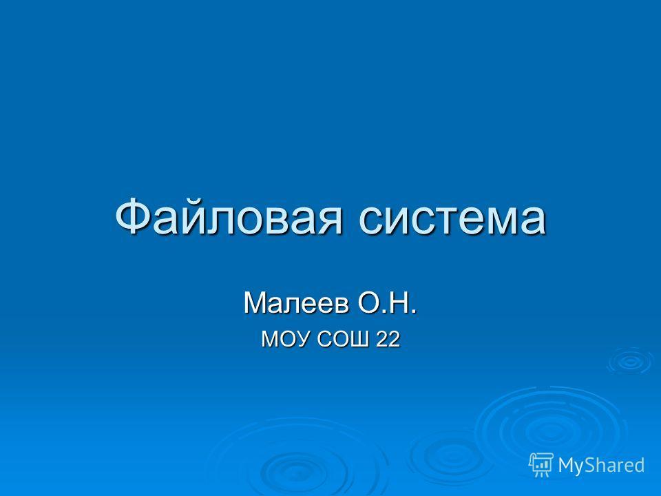 Файловая система Малеев О.Н. МОУ СОШ 22