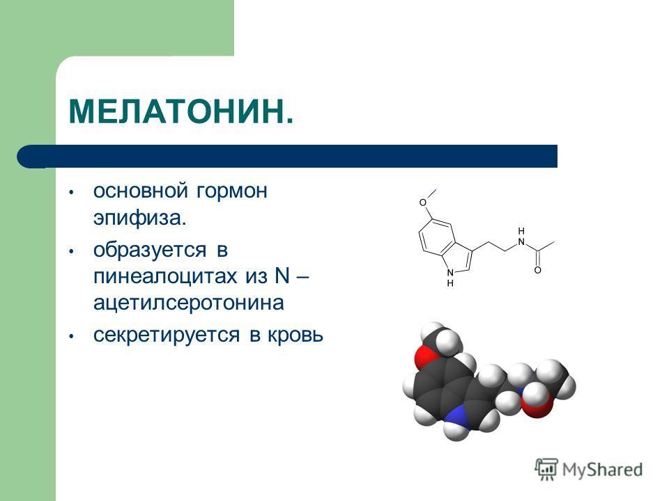 МЕЛАТОНИН. основной гормон эпифиза. образуется в пинеалоцитах из N – ацетилсеротонина секретируется в кровь