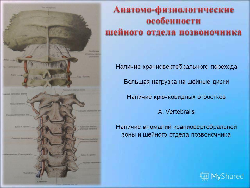 Наличие краниовертебрального перехода Большая нагрузка на шейные диски Наличие крючковидных отростков А. Vertebralis Наличие аномалий краниовертебральной зоны и шейного отдела позвоночника