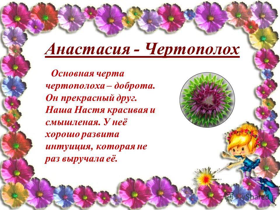Анастасия - Чертополох Основная черта чертополоха – доброта. Он прекрасный друг. Наша Настя красивая и смышленая. У неё хорошо развита интуиция, которая не раз выручала её.