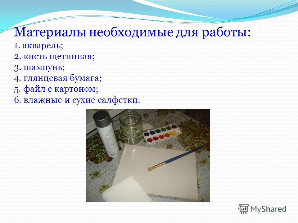 Материалы необходимые для работы: 1. акварель; 2. кисть щетинная; 3. шампунь; 4. глянцевая бумага; 5. файл с картоном; 6. влажные и сухие салфетки.