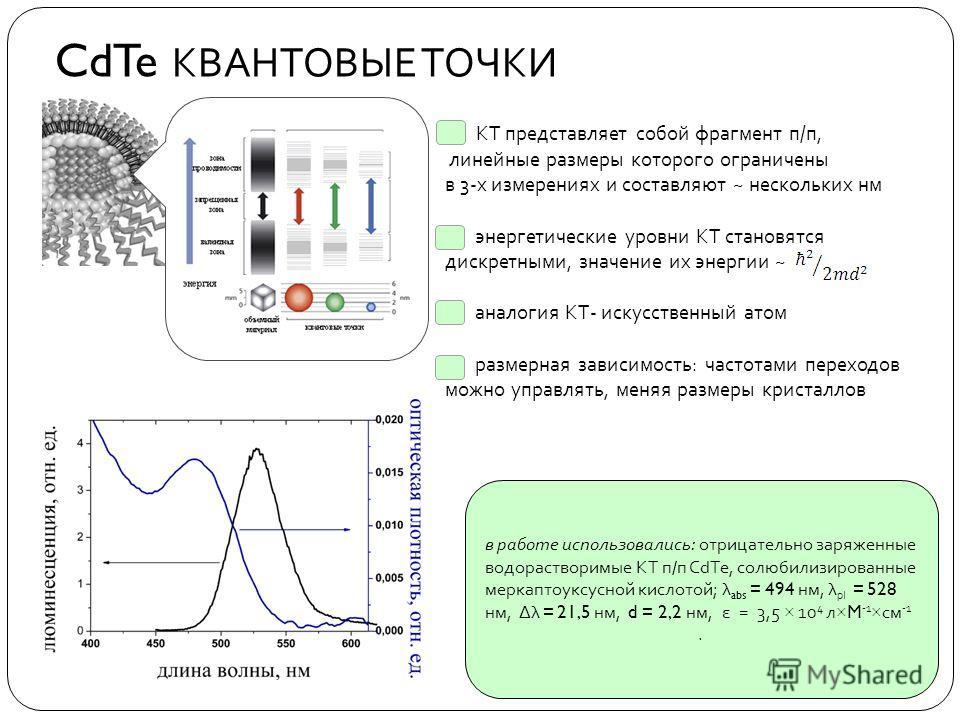 CdTe КВАНТОВЫЕ ТОЧКИ КТ представляет собой фрагмент п/п, линейные размеры которого ограничены в 3-х измерениях и составляют ~ нескольких нм энергетические уровни КТ становятся дискретными, значение их энергии ~ аналогия КТ- искусственный атом размерн