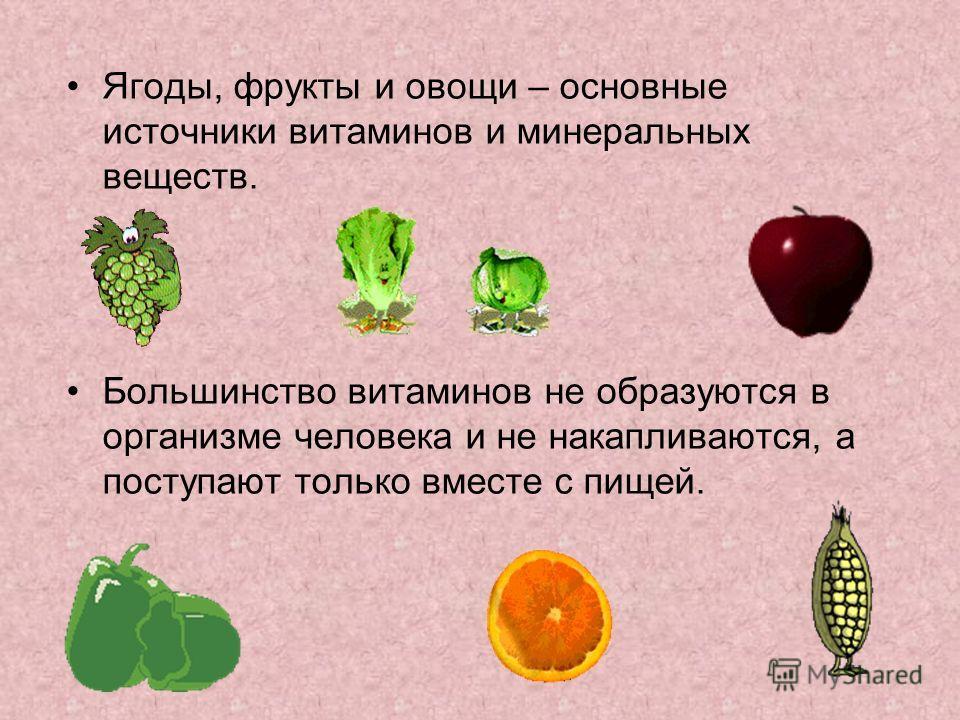 Ягоды, фрукты и овощи – основные источники витаминов и минеральных веществ. Большинство витаминов не образуются в организме человека и не накапливаются, а поступают только вместе с пищей.