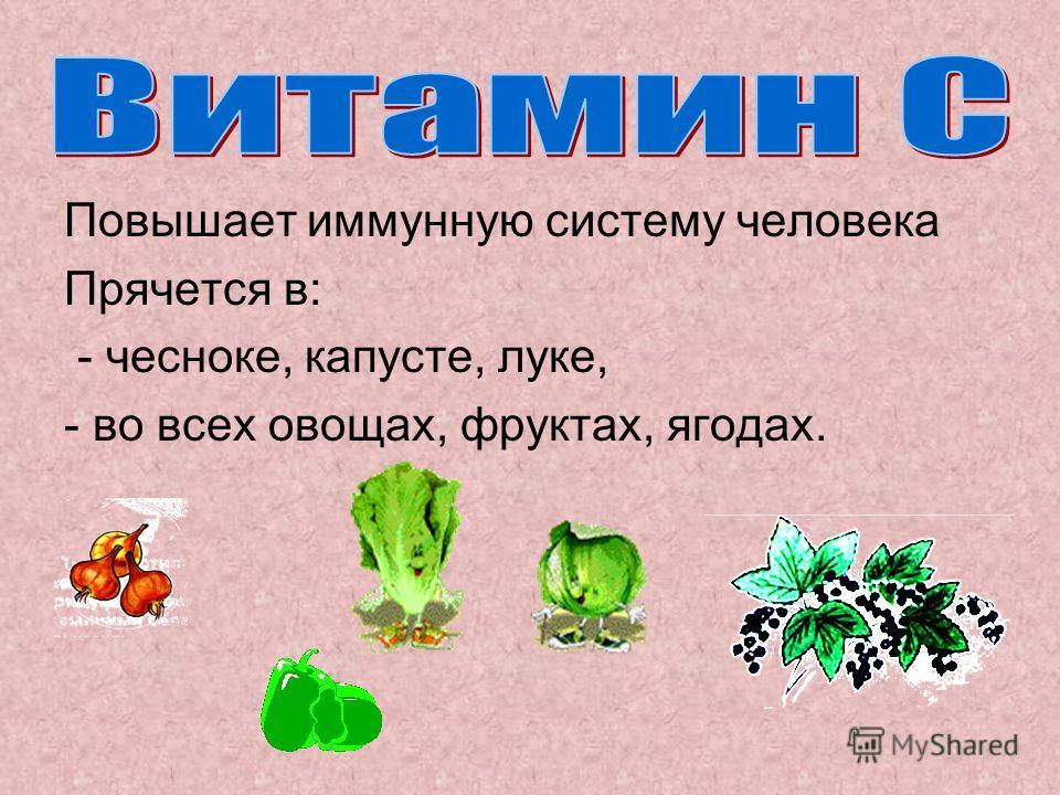 Повышает иммунную систему человека Прячется в: - чесноке, капусте, луке, - во всех овощах, фруктах, ягодах.