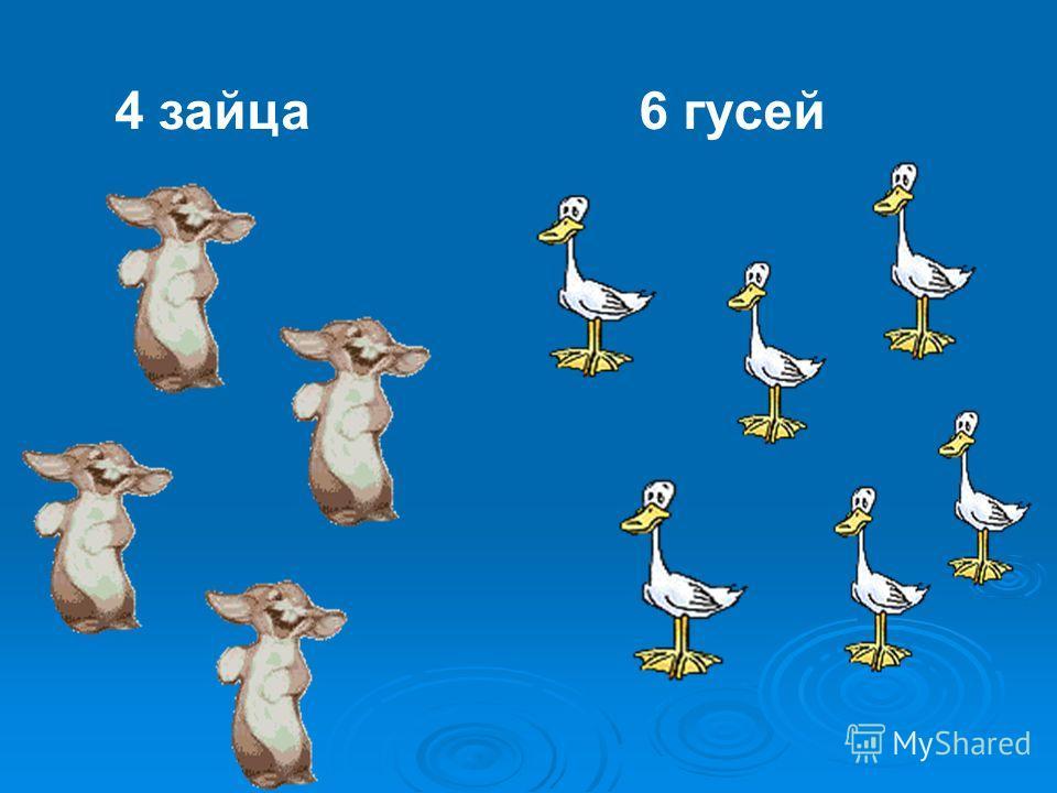 4 зайца6 гусей