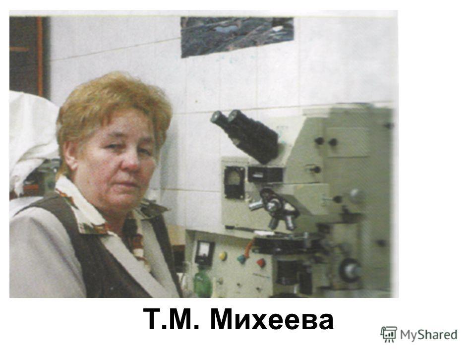 Т.М. Михеева