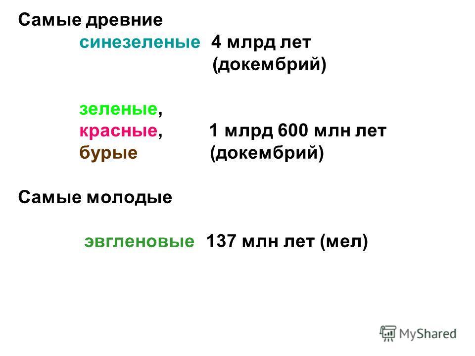 Самые древние синезеленые 4 млрд лет (докембрий) зеленые, красные, 1 млрд 600 млн лет бурые (докембрий) Самые молодые эвгленовые 137 млн лет (мел)