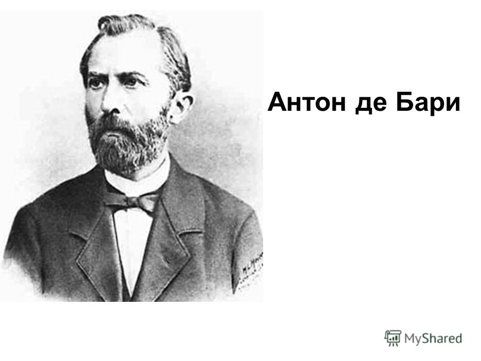 Антон де Бари