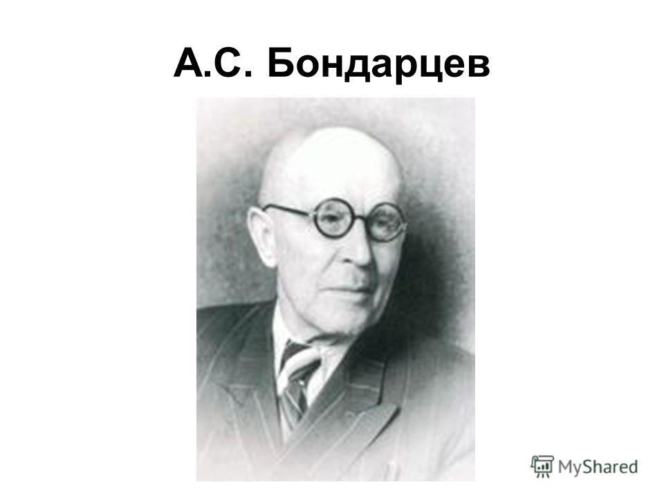 А.С. Бондарцев