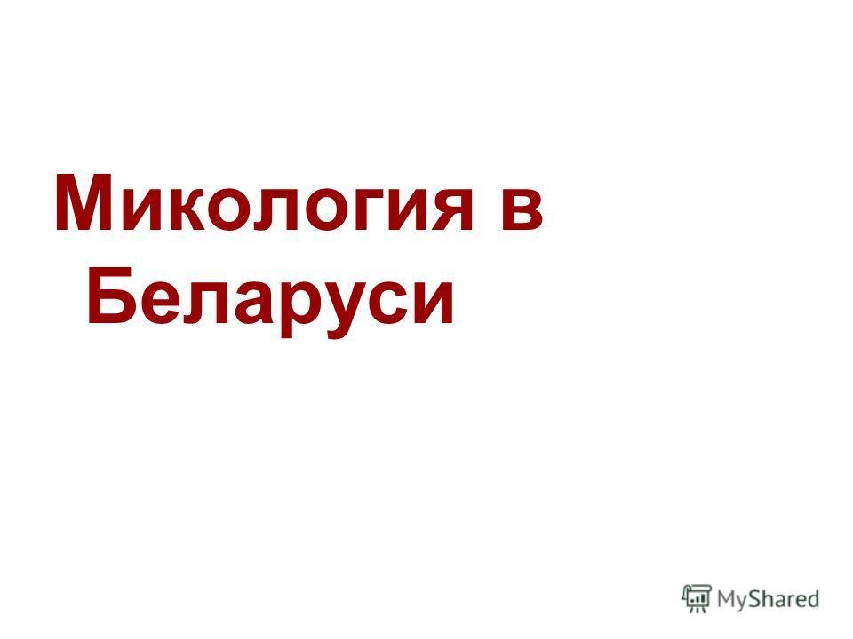 Микология в Беларуси