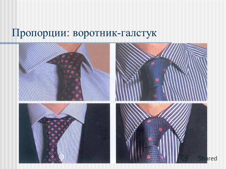Пропорции: воротник-галстук