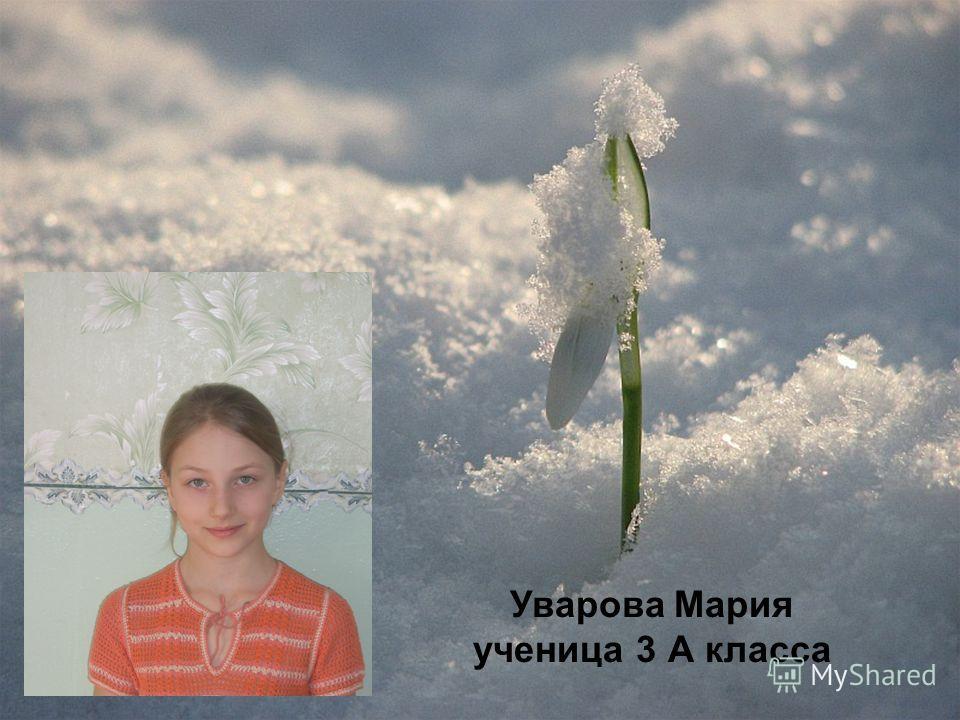 Уварова Мария ученица 3 А класса