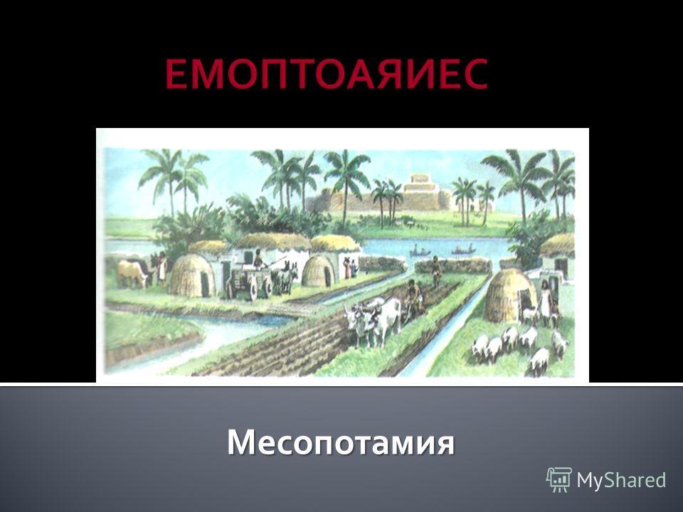 Месопотамия Месопотамия