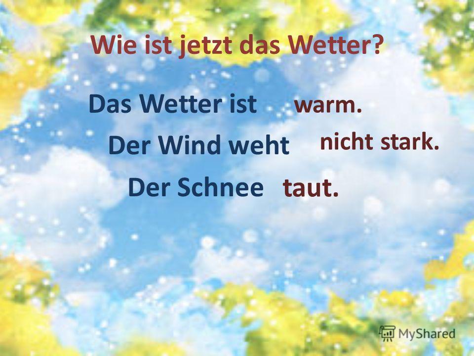 Wie ist jetzt das Wetter? Das Wetter ist Der Wind weht Der Schnee warm. nicht stark. taut.