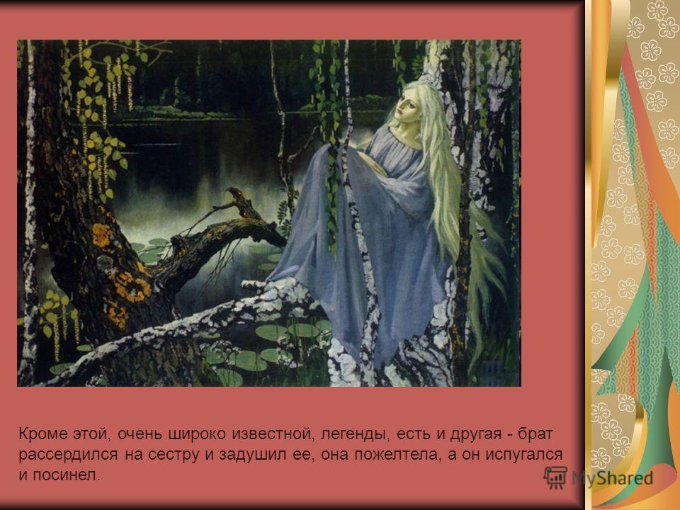 Кроме этой, очень широко известной, легенды, есть и другая - брат рассердился на сестру и задушил ее, она пожелтела, а он испугался и посинел.