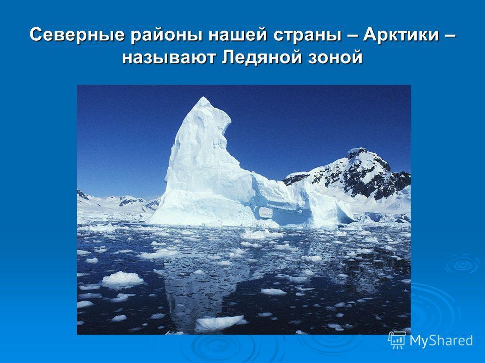Северные районы нашей страны – Арктики – называют Ледяной зоной