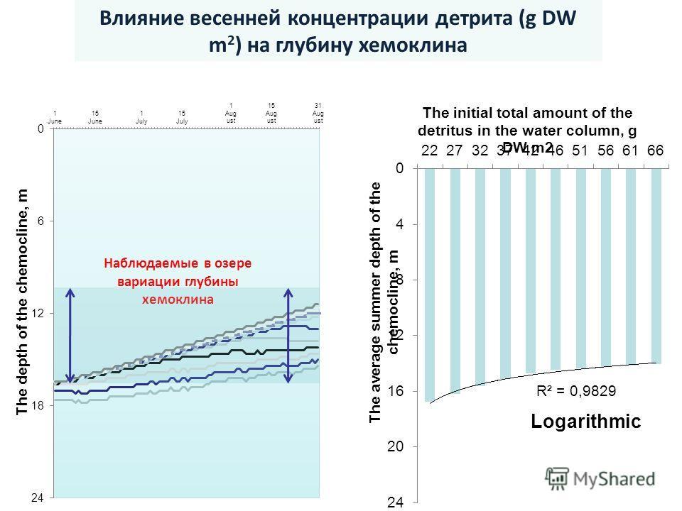 Влияние весенней концентрации детрита (g DW m 2 ) на глубину хемоклина Наблюдаемые в озере вариации глубины хемоклина