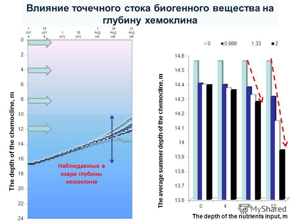 Наблюдаемые в озере глубины хемоклина Влияние точечного стока биогенного вещества на глубину хемоклина