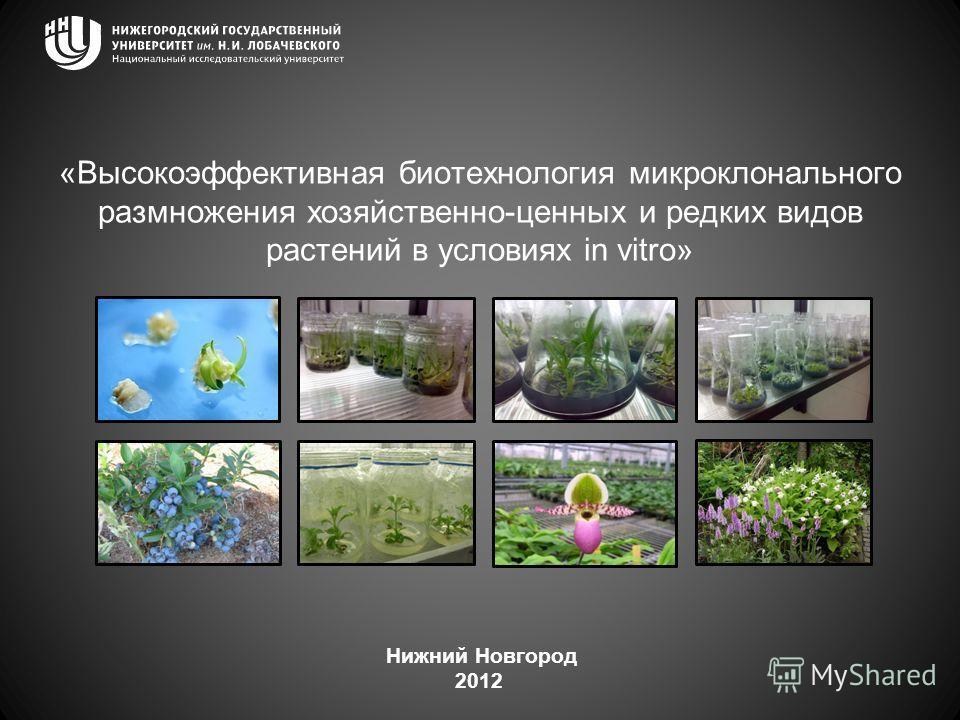 «Высокоэффективная биотехнология микроклонального размножения хозяйственно-ценных и редких видов растений в условиях in vitro» Нижний Новгород 2012