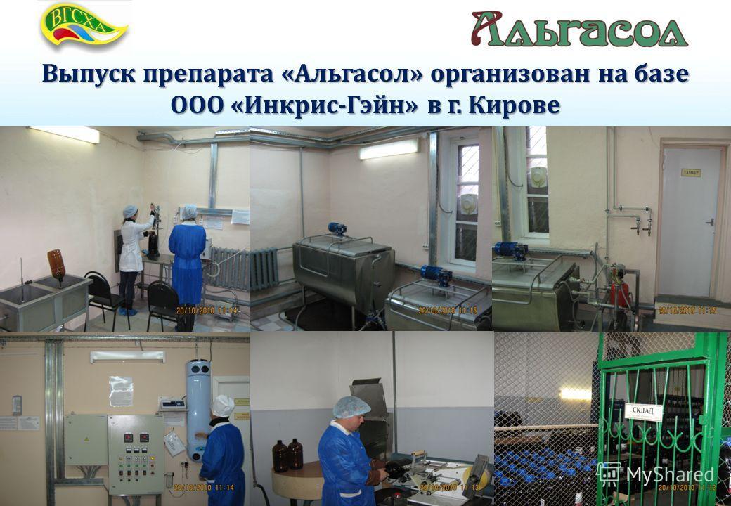 Выпуск препарата «Альгасол» организован на базе ООО «Инкрис-Гэйн» в г. Кирове