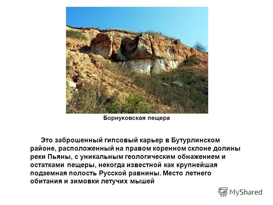 Борнуковская пещера Это заброшенный гипсовый карьер в Бутурлинском районе, расположенный на правом коренном склоне долины реки Пьяны, с уникальным геологическим обнажением и остатками пещеры, некогда известной как крупнейшая подземная полость Русской