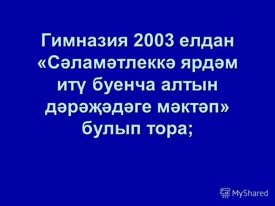 Гимназия 2003 елдан «Сәламәтлеккә ярдәм итү буенча алтын дәрәҗәдәге мәктәп» булып тора;
