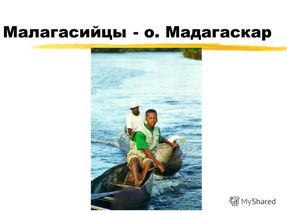 Малагасийцы - о. Мадагаскар
