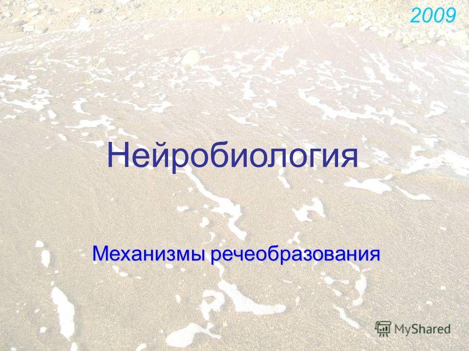 Нейробиология Механизмы речеобразования 2009