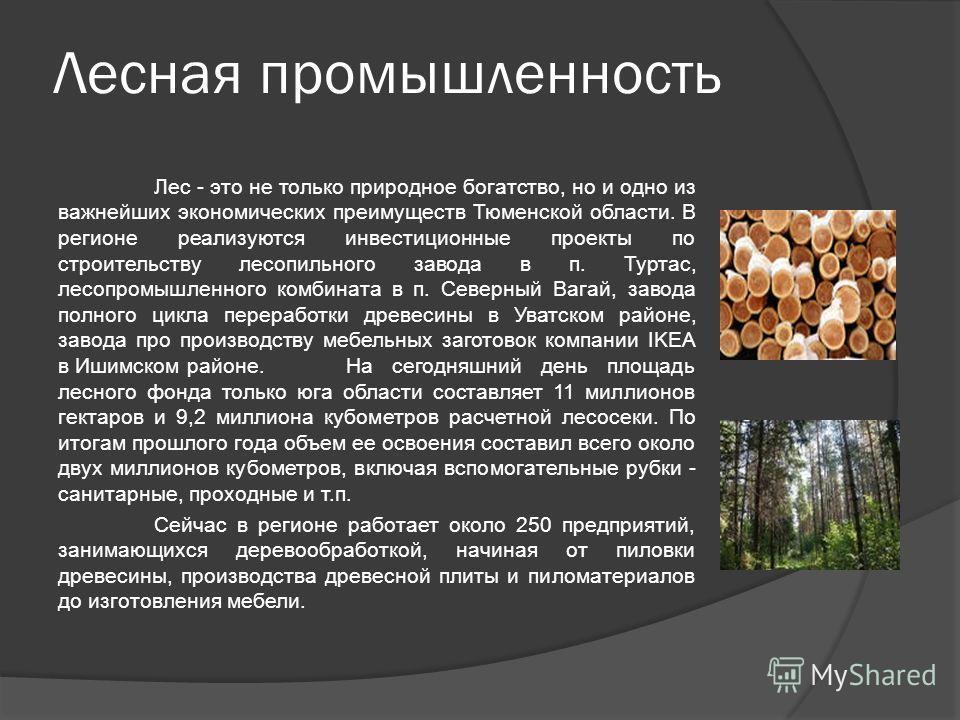 Лесная промышленность Лес - это не только природное богатство, но и одно из важнейших экономических преимуществ Тюменской области. В регионе реализуются инвестиционные проекты по строительству лесопильного завода в п. Туртас, лесопромышленного комбин