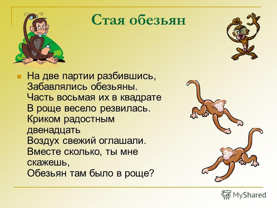 Стая обезьян На две партии разбившись, Забавлялись обезьяны. Часть восьмая их в квадрате В роще весело резвилась. Криком радостным двенадцать Воздух свежий оглашали. Вместе сколько, ты мне скажешь, Обезьян там было в роще?