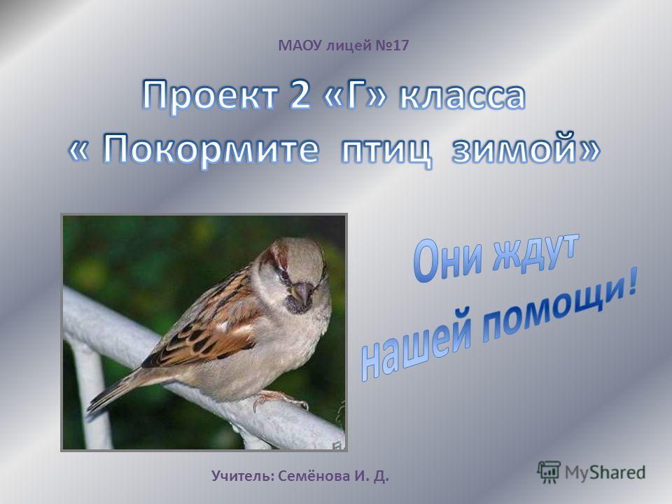 МАОУ лицей 17 Учитель: Семёнова И. Д.