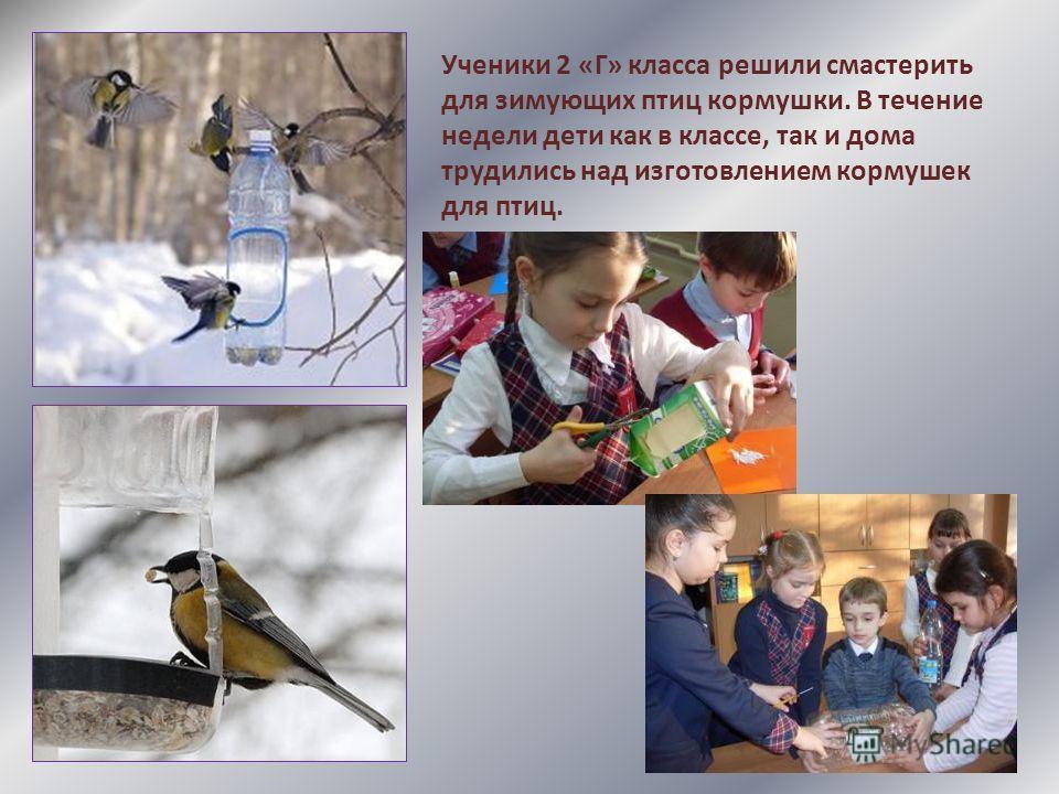 Ученики 2 «Г» класса решили смастерить для зимующих птиц кормушки. В течение недели дети как в классе, так и дома трудились над изготовлением кормушек для птиц.