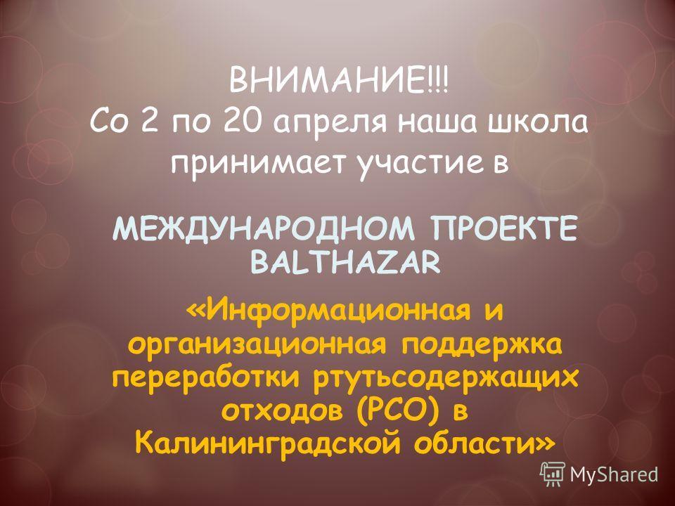 ВНИМАНИЕ!!! Со 2 по 20 апреля наша школа принимает участие в МЕЖДУНАРОДНОМ ПРОЕКТЕ BALTHAZAR «Информационная и организационная поддержка переработки ртутьсодержащих отходов (РСО) в Калининградской области»